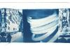 cyano-venedig-6-2011
