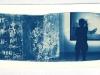 cyano-venedig-8-2011